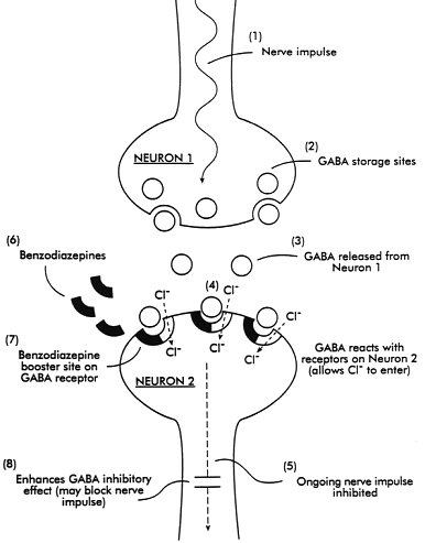 haloperidol mode d'action